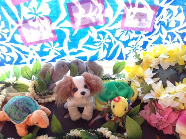 愛犬パピヨンと亀たちと短冊