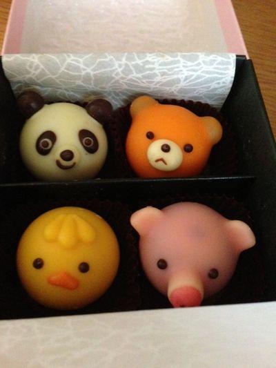 動物のチョコレート