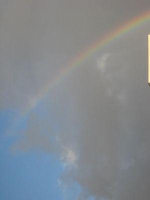 曇り空に現れた虹